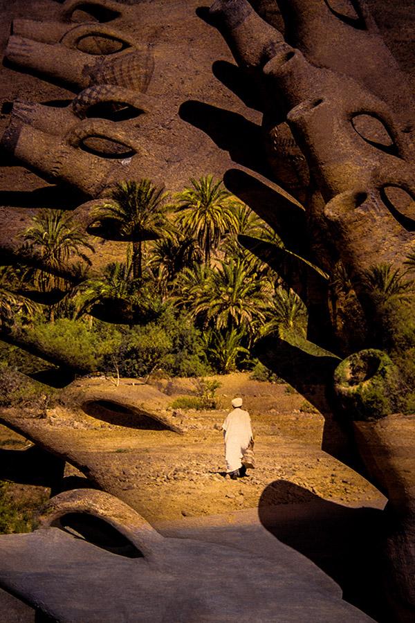 Photo N°527,  Maroc - Francis Gazeau