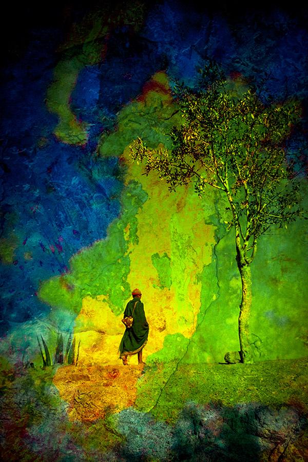 Personnage, arbre et couleurs