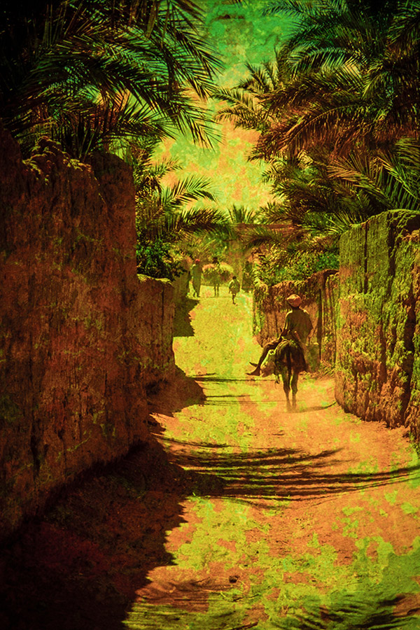 Photo N°651,  Maroc - Francis Gazeau